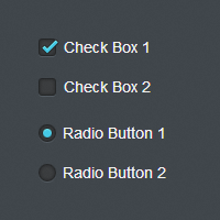 Quick Tip: Easy CSS3 Checkboxes and Radio Buttons